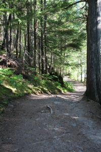 The trail to Kinney Lake