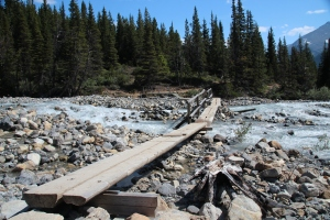 A sequence of bridges leading to Berg Lake