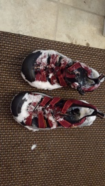 the shoes I wore in the water filled with snow before I got in and froze solid when I got out
