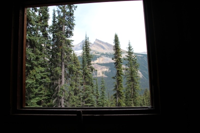 The view from the outhouse at the chalet
